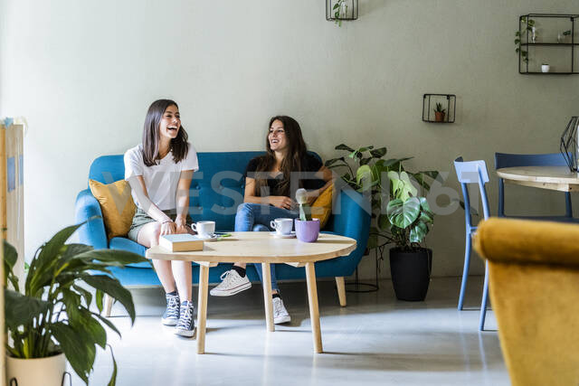 Two happy young female friends sitting on a couch in a cafe - GIOF07067 - Giorgio Fochesato/Westend61