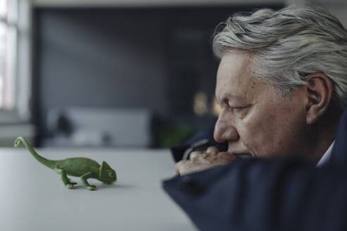 Senior businessman looking at toy chameleon - GUSF02549