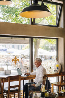 Happy senior businessman using laptop in a cafe - GUSF02623