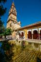 Bell Tower of La Mezquita (Great Mosque), UNESCO World Heritage Site, Cordoba, Andalucia, Spain, Europe - RHPLF10424