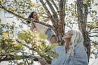 Mother and daughter having fun, climbing a tree - JOSF03770