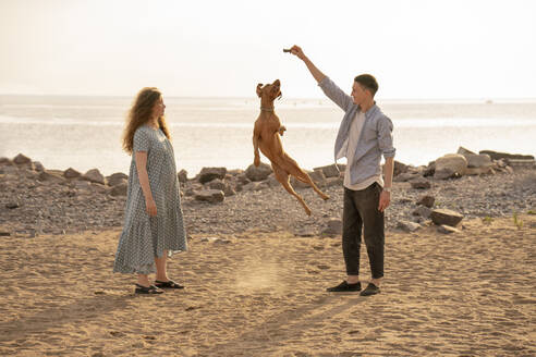 Young couple with dog at the beach, dog jumping - VPIF01519