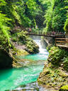 Radovna River flowing through Vintgar Gorge, near Bled, Slovenia, Europe - RHPLF11810