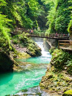 Radovna River flowing through Vintgar Gorge, near Bled, Slovenia, Europe - RHPLF11810