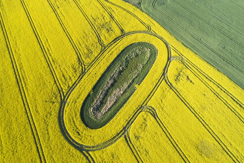 Germany, Mecklenburg-Western Pomerania, Aerial view of vast rapeseed field with green oval inside - RUEF02329