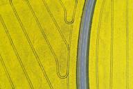 Germany, Bavaria, Aerial view of empty highway between vast rapeseed fields in spring - RUEF02356