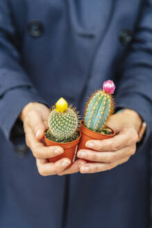 woman hands holding some cactus in plant nursery/SPAIN/ALICANTE/ALICANTE - DLTSF00167