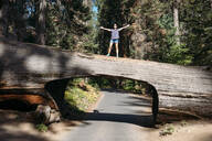 Woman standing on top of a Tunnel Log in Sequoia National Park, California, USA - GEMF03163