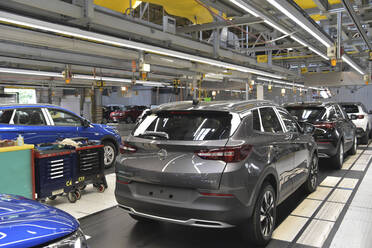 Modern automatized car production in a factory - LY00951