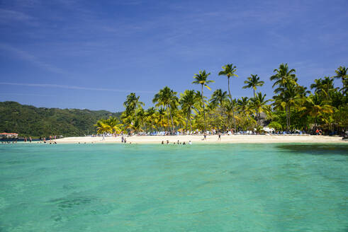 Baccardi island, Cayo Levantado, Samana, Dominican Republic - RUNF03265