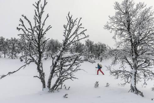 Person skiing - JOHF01491