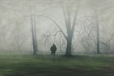 Man walking on meadow with trees, fog - DWIF01038