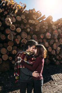 Young couple in love in front of tree logs - DAMF00112