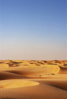 Sultanate Of Oman, Wahiba Sands, dunes in the desert - WWF05261