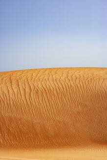 Sultanate Of Oman, Wahiba Sands, dunes in the desert - WWF05264