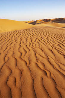 Sultanate Of Oman, Wahiba Sands, dunes in the desert - WWF05273