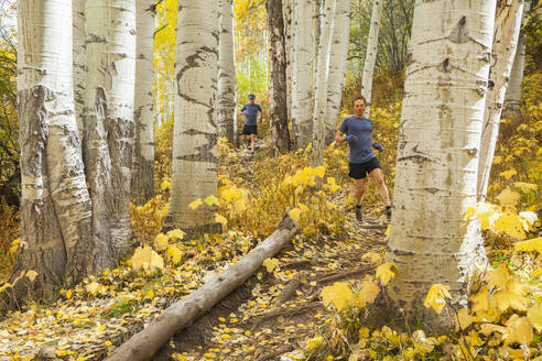 Men trail run through aspen forest with fall color in Vail, Colorado - CAVF63422
