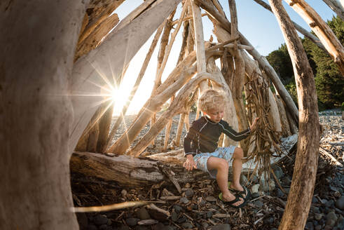 Young boy playing in driftwood structure on a sunny evening - CAVF64502