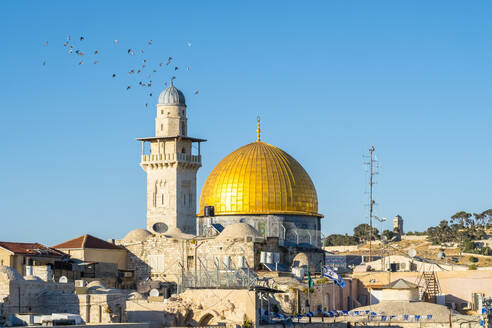 Dome of the Rock and buildings in the old city, Jerusalem - CAVF64520
