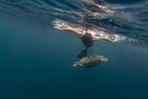 Man diving with turtle, Gili island, Bali - KNTF03632