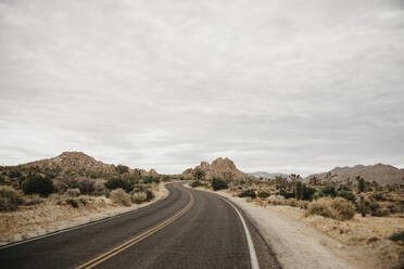 Road to Joshua Tree, Joshua Tree National Park, California, USA - LHPF01007