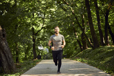 Sporty man running on forest path - ZEDF02630