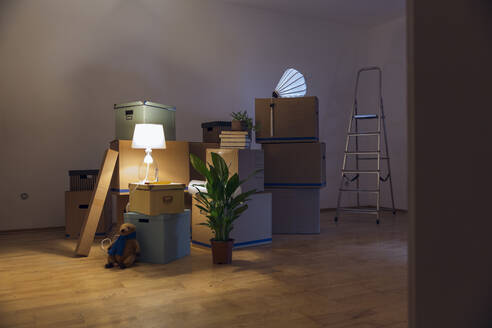 Cardboard boxes in an empty room in a new home - MAMF00802