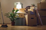 Teddy bear inside cardboard box in an empty room in a new home - MAMF00832