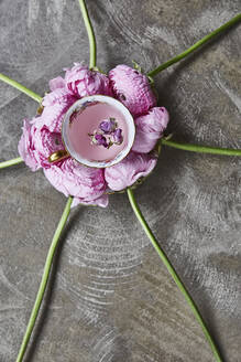 Cap and pink flowers - JOHF02891