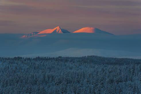Winter landscape at sunset - JOHF03092