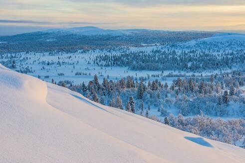 Winter landscape - JOHF03605