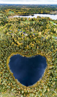 Heart-shaped lake surrounded by forest - JOHF04022