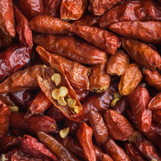Dried red chilies - JOHF04226