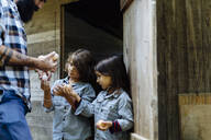 Father with two kids collecting eggs at chicken coop on an organic farm - SODF00093