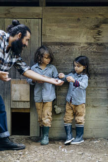 Father with two kids collecting eggs at chicken coop on an organic farm - SODF00096