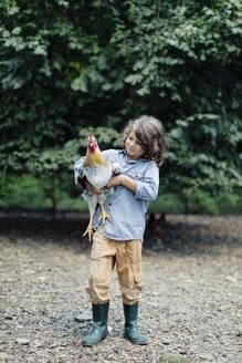 Boy holding chicken on an organic farm - SODF00099