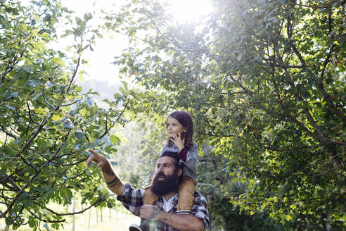 Father talking to kid on his shoulders in the forest - SODF00102