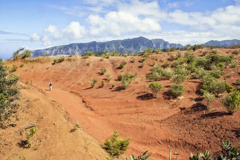 Hiker on red soil, Agulo, La Gomera, Canary Islands, Spain - MAMF00886