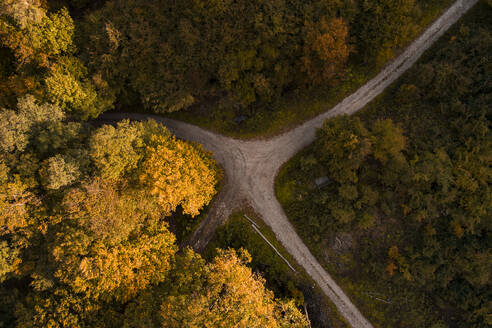 Austria, Lower Austria, Aerial view of junction of gravel road in autumn forest - HMEF00629