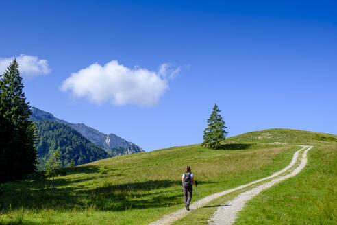 Wanderer auf dem Weg zum Längenberg, bei Arzbach, Isarwinkel, Oberbayern, Bayern, Deutschland - LBF02736