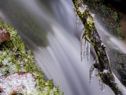 Germany, Bavaria, Ice-covered branches against splashing waterfall - HUSF00091