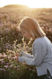 Girl smelling flowers in a clover field - EYAF00622