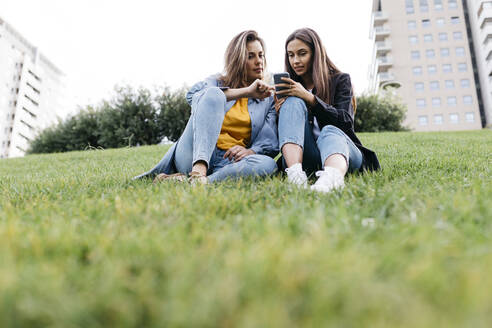 Two friends looking on the smartphone, sitting on a meadow of a park - JRFF03807