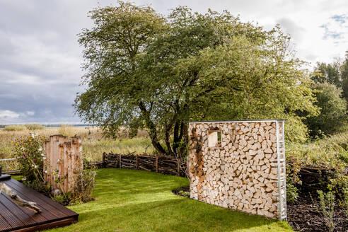 Firewood in garden - EGBF00363