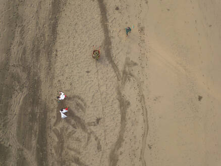 Lifeguards collecting garbage on beach - CAVF66063