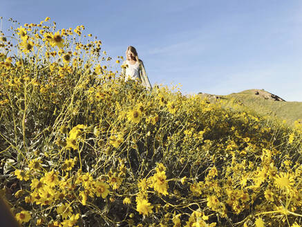 Woman walking on flowering field during sunny day - CAVF67202