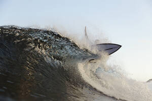 Surfer on a wave - CAVF67328