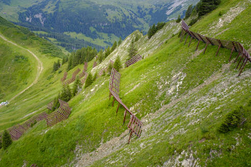 Lawinenschutz am steilen Hang, am Walmendinger Horn, Kleinwalsertal, Allgäuer Alpen, Allgäu, Vorarlberg, Österreich - LBF02755