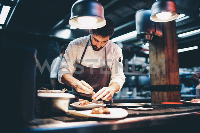 Cook serving food on a plate in the kitchen of a restaurant - OCMF00855 - Oscar Carrascosa Martinez/Westend61