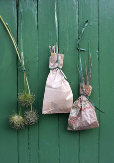 Germany, Hamburg, Dried plants in paper bags hanging on wooden house - GISF00477
